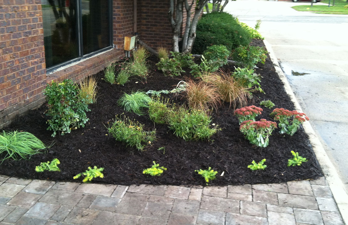 Driveway landscape showcasing black mulched flower bed with grasses and flower variety